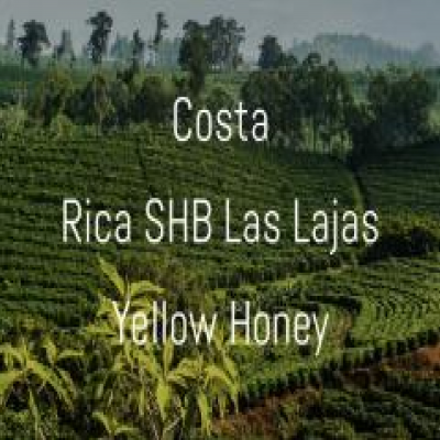 Costa Rica SHB  Las Lajas Yellow Honey - Format 1/2 lbs (227 g)
