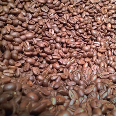 Camacho - 1/2 lbs (227 g)